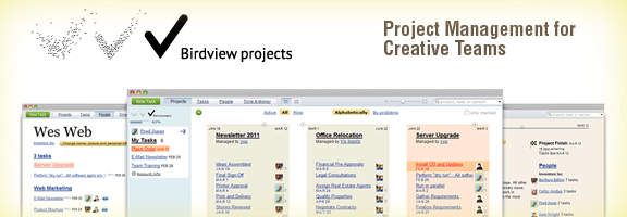 Birdviewprojects.com –Project Management for Acumen Teams