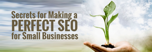 Secrets for Making a Perfect SEO for Small Businesses