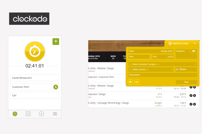 Clockodo Web app Review
